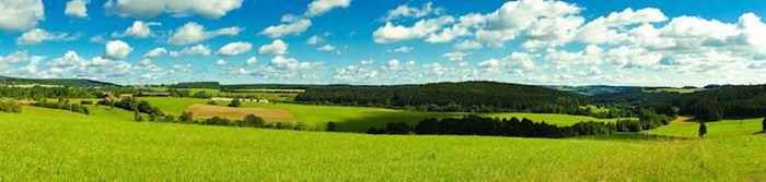 Schwarzwald im Panorama
