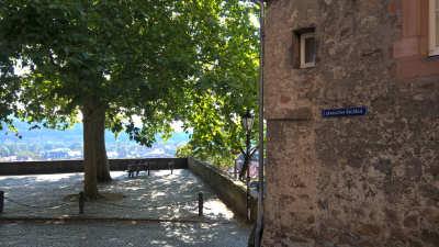 Linde über Marburg