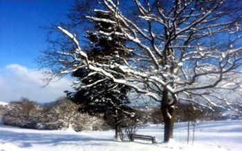 Deutschland - NRW - Sauerland im Winter