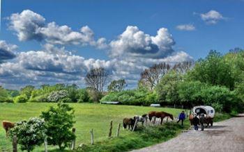 Landleben bei Dahme - Ostsee