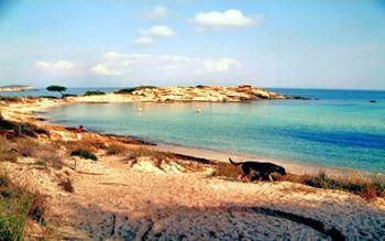 Strand in Chalkidiki