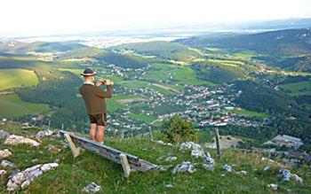 Trompeter in den Alpen - Niederösterreich