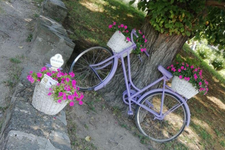Lila Fahrrad auf Tihany
